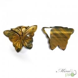 Papillon en Oeil de tigre - percé - grossiste lithothérapie bouches du Rhone